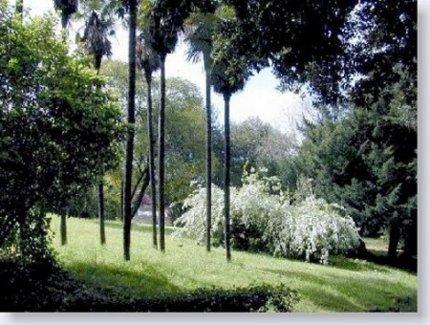 Roma. Parco di Valle Giulia