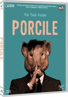 """""""Porcile"""". Cofanetto"""
